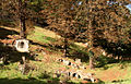 Mont Valerien - Cimetiere (3).JPG