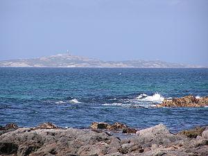 Montague Island (Australia) - Image: Montague Island Fm Narooma
