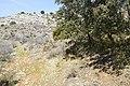 Monte - panoramio (18).jpg