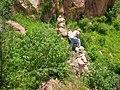 Monte de Huma - panoramio (20).jpg