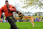 Month of Military Child MWD demonstration 150414-F-OH119-394.jpg