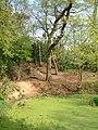 Moseley Bog - geograph.org.uk - 89202.jpg