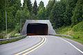Mosoddentunnelen (E6).jpg