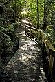 Mount Field National Park 05.jpg