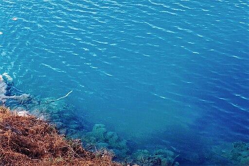 Penembakan Selandia Baru Wikipedia: Danau-Danau Terunik Dan Menakjubkan