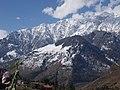 Mountain beauty 3.jpg