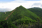 Mt.Kobushigatake from Mt.Tokusa 03.jpg