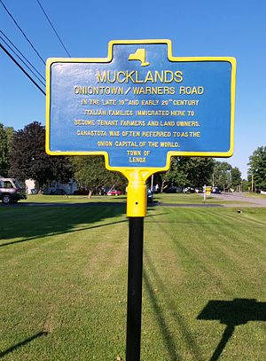 Canastota, New York - Historic marker