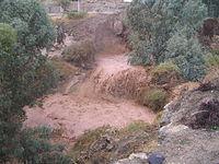 Nahal Harod2.JPG