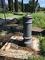 Nasone Parco Regionale dell'Appia Antica, Roma, Italia May 07, 2021 03-22-28 PM.jpeg