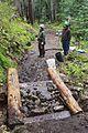 National Public Lands Day 2014 at Mount Rainier National Park (078), Narada.jpg
