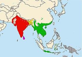 Phân bổ khu vực màu đỏ là của loài phụ Python molurus molurus, khu vực màu xanh là của phân loài Python molurus bivittatus, khu vực màu hồng là phân loài Python molurus pimbura, khu vực màu vàng là vùng chồng lấn phân bổ của các phân loài.