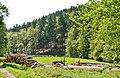 Naturpark Rothaargebirge - panoramio (10).jpg