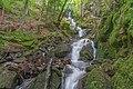 Naturschutzgebiet Schwarza-Schlücht-Tal - Wasserfälle in der Berauer Halde Bild 2.jpg
