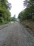 Nebenbahn Wennemen-Finnentrop (5829116223).jpg