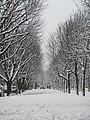Neige Champs-Élysées.jpg