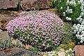 Neuer Botanischer Garten Marburg - 0006.jpg