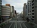 Nipponbashi - panoramio - DVMG (3).jpg