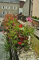 Noroy-le-Bourg - lavoir fleurs.jpg