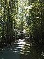 North Raleigh, Raleigh, NC, USA - panoramio (2).jpg