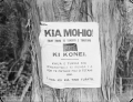 Notice attached to a tree, written in Maori, warning not to light fires. ATLIB 306469.png