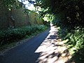 Nunnery Lane bridleway, Darlington - geograph.org.uk - 1327169.jpg