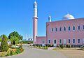Nuur-ud-Din-Moschee mit Blick auf Emir-Sultan-Moschee.jpg