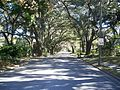 Ocala Hist Dist - 5th Street looking east3.jpg