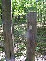 Old Telephone pole 022.jpg