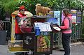 Organ grinder with pets 1, Paris 25 May 2014.jpg