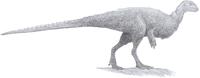 Orodromeus (pencil 2013).png