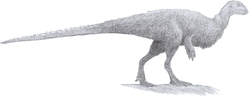 Orodromeus (pencil 2013).png