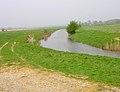 Otter Channel - geograph.org.uk - 400064.jpg
