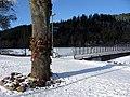 Ottiliensteg mit Gedenkbaum an der Dreisam in Freiburg-Waldsee, in der Nähe des Fundortes.jpg