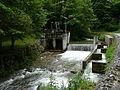 Ourse de Sost Esbareich barrage (2).jpg