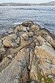 Outcropping - Nesodden, Norway 2020-09-20.jpg