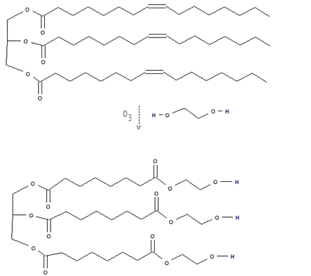 Ozonolysis of unsaturated triglyceride
