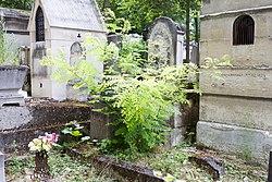 Tomb of Piot