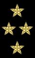 POR-Navy-Admiral-of-the-Fleet-shoulder.png