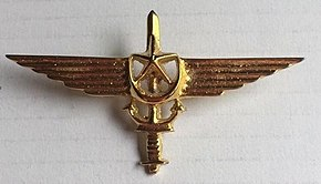 Pakistan Navy Special Service Group Badge.jpg