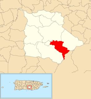 Palmarejo, Coamo, Puerto Rico Barrio of Puerto Rico