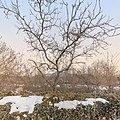 Parc Natural de Pedra Tosca 03.jpg