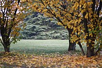 Parco Nord Milano by Stefano Bolognini4.JPG