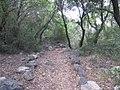 Park Goren, Israel 14.jpg