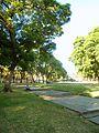ParqueAmeghino.jpg