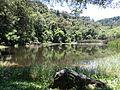 Parque Estadual da Cantareira - Núcleo Águas Claras - Lago das Carpas.JPG