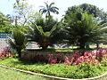 Parque del Este 2012 080.JPG