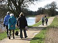 Path Along the North Bank of Marsworth Reservoir - geograph.org.uk - 1221339.jpg
