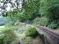 Path beside the Talyllyn Railway - geograph.org.uk - 268205.jpg