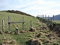 Path leading to Ty-mawr - geograph.org.uk - 1167983.jpg